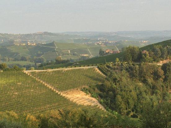 Castiglione Falletto, Ιταλία: Blick von der Terrasse nach dem Aufwachen