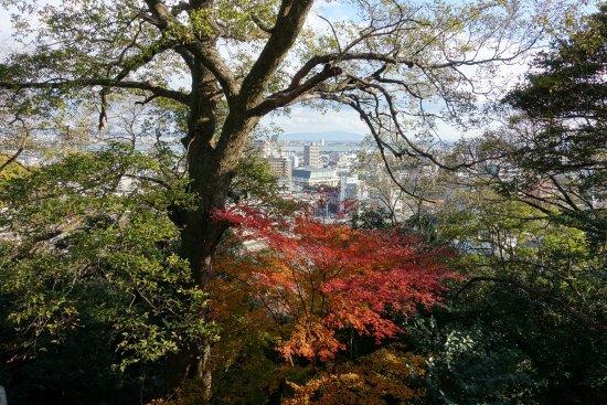 Tokushima Photo