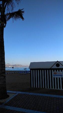 Playa de Las Canteras: playa des canteros~07_large.jpg