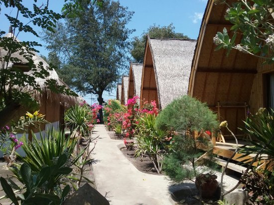 Jardin Picture Of Bambu Cottages Gili Air Tripadvisor - Jardin-bambu
