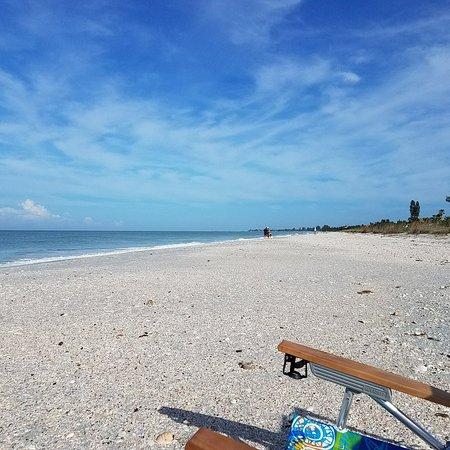 The Beachcomber: IMG_20171010_200923_559_large.jpg