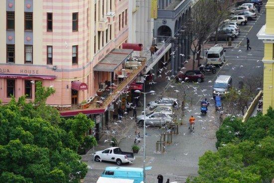 Mandela Rhodes Place Hotel: photo8.jpg
