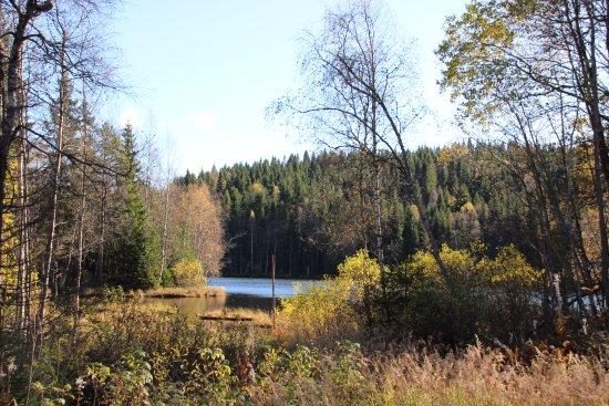 Oslomarka: lovely walking trails