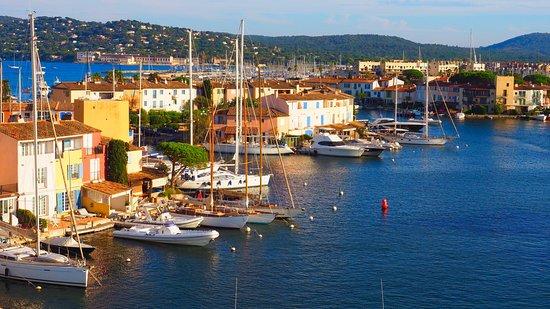 Port Grimaud, France: Vue de la terrasse