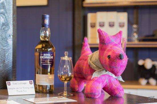 Ballater, UK: Scottie, le scottish terrier