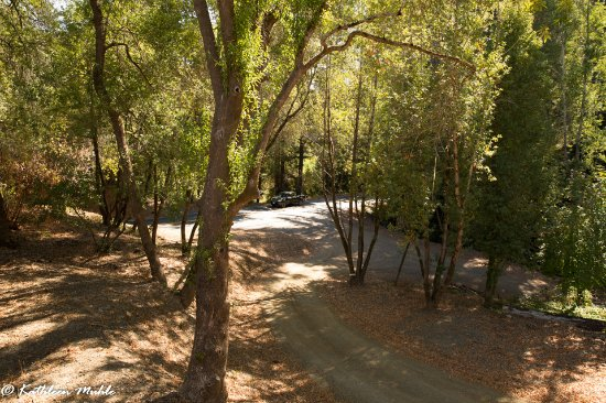 Philo, Kalifornia: View of road from porch