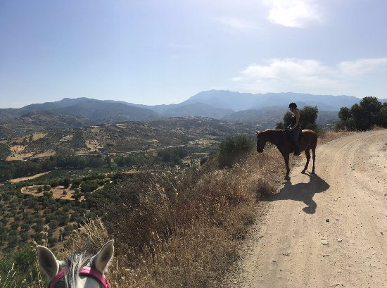 Malaga Horse Trails: A great view