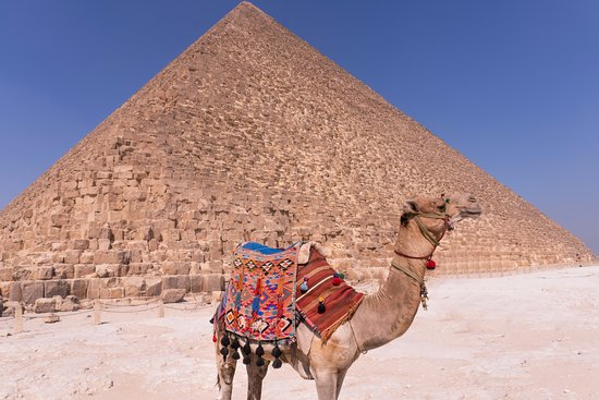 Ayman Ahmed - Tour Guide: one of the locals posing for a shot in front of the pyramids.