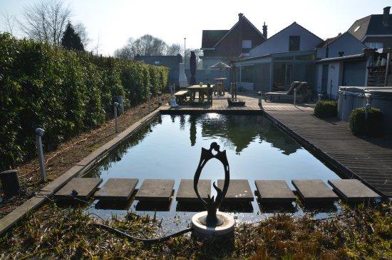 Aalst, België: zwemvijver