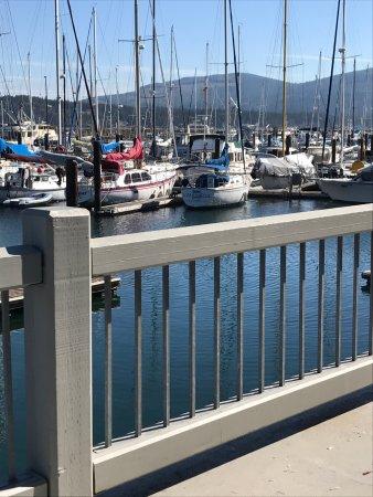 Dockside Grill: photo3.jpg