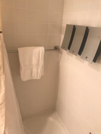 Dolce Hayes Mansion: Dispensers = cheap. Towel low & now wet. Curtain short = wet floor.