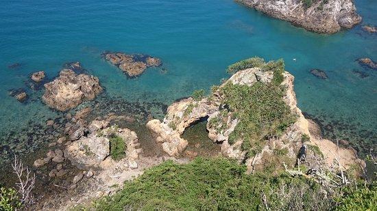 Matiu / Somes Island: coast