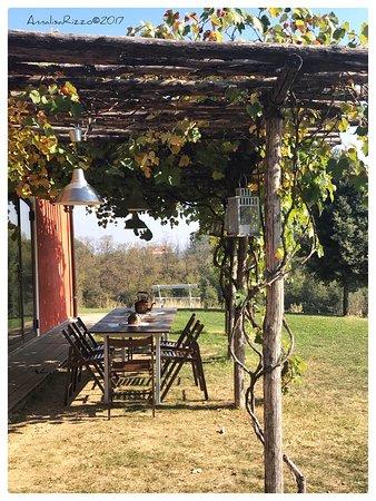 Le Colline Della Luna: photo7.jpg