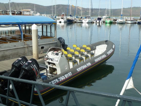 Knysna RIB Adventures: photo1.jpg