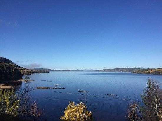 Vallsta, Suecia: Orbaden visade sig från sin bästa sida. Helgen blandades med god mat, badande i utomhuspoolen nj