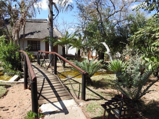 Balule Nature Reserve, Νότια Αφρική: jardim
