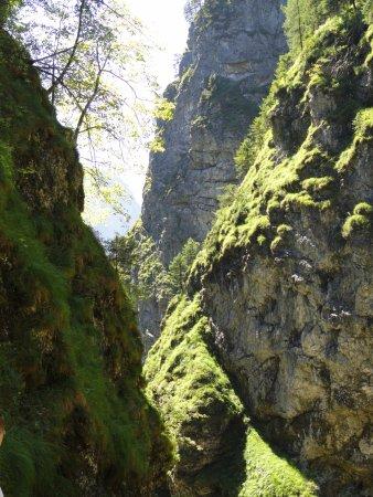 Beste Spielothek in Scheffau am Tennengebirge finden