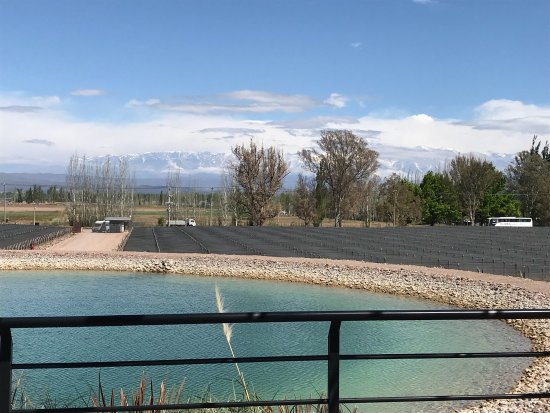 Agrelo, Argentina: photo3.jpg