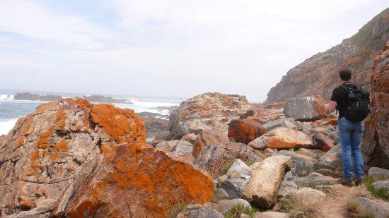 Plettenberg Bay, Republika Południowej Afryki: photo7.jpg