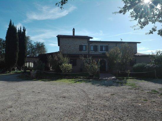 Montemerano, Ιταλία: IMG_20171011_160645_large.jpg