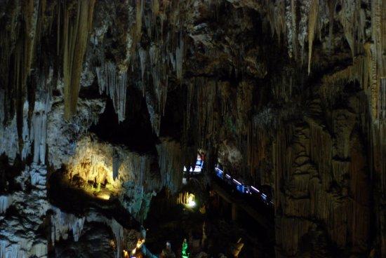 Cueva de Nerja: Gruta general