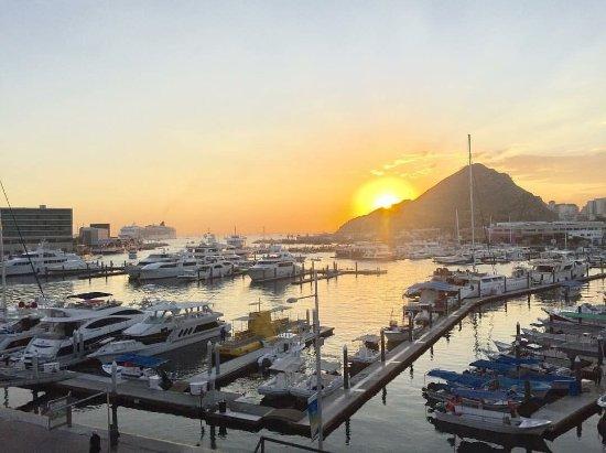 Tesoro Los Cabos: photo1.jpg