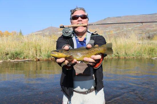 Utah Pro Fly Fishing: Brown Trout Fun!