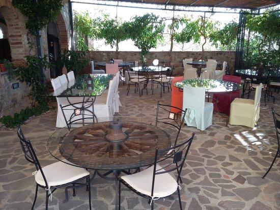 Torrita di Siena, Italia: 20171014_120210_large.jpg