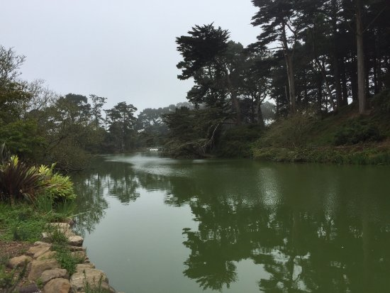 Stow Lake looking east