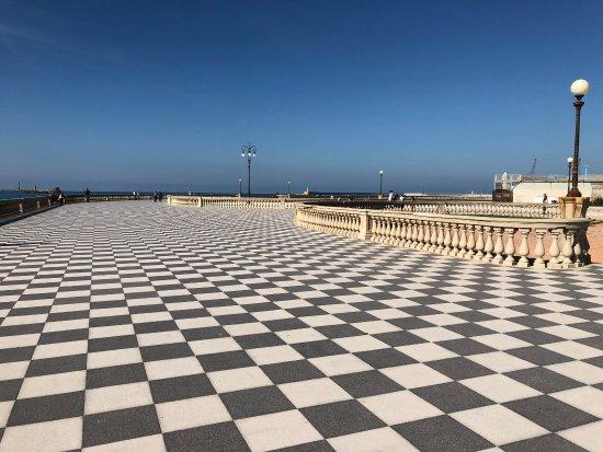 Best Livorno Terrazza Mascagni Images