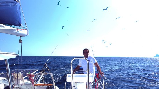 Mahe Island, Seychelles: Mauvaise photo mais on voit les oiseaux attendre que l'on pêche du poisson pour eux.