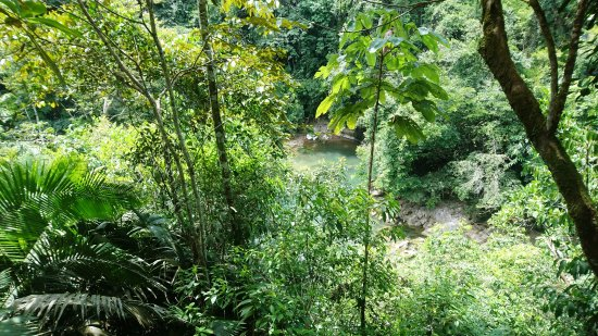 Canon del Rio Claro Reserva Natural