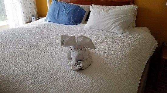 Residence Inn Orlando Convention Center: My eyeglasses on the towel & face cloth (cute)