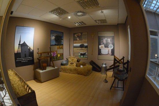 MQM Museo del Queso Manchego Toledo