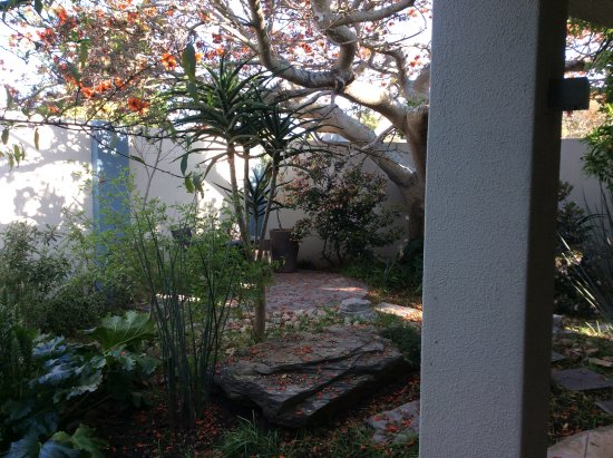 Summerstrand, South Africa: The garden with our suite
