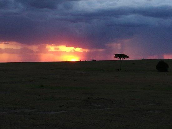 Basecamp Masai Mara: IMG_20170625_183827_large.jpg