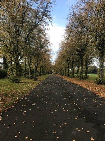 Preston, UK: photo3.jpg