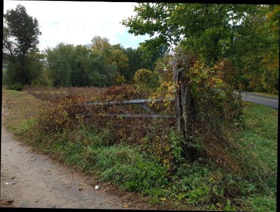 Farmington, كونيكتيكت: 20171011_113235_large.jpg