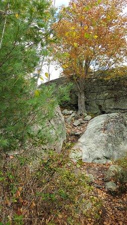 Bilde fra Bear Mountain