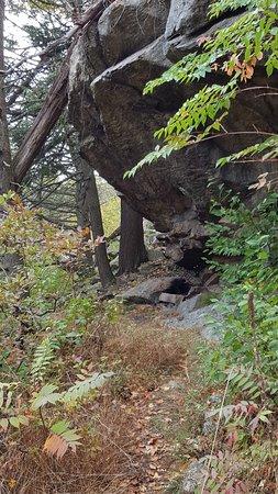 Bear Mountain Foto