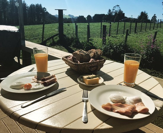 B&B Blossom Cottage: Fantastic breakfast on the deck in the sun overlooking the farm!