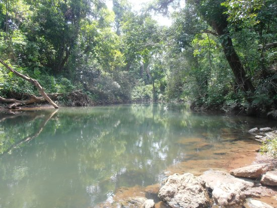 Belmopan, Belize: Lovely river where you can go for a swim!
