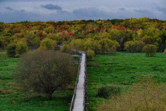 Nicolet, Canada: photo5.jpg