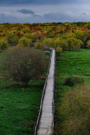 Nicolet, Canada: photo8.jpg
