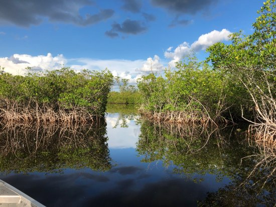 Jungle Erv's Everglades Airboat Tours: photo1.jpg