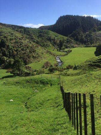 Te Awamutu, Νέα Ζηλανδία: photo0.jpg