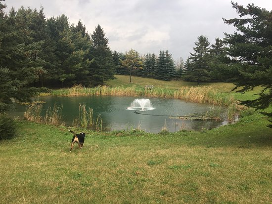 Mansfield, Canada: The pond
