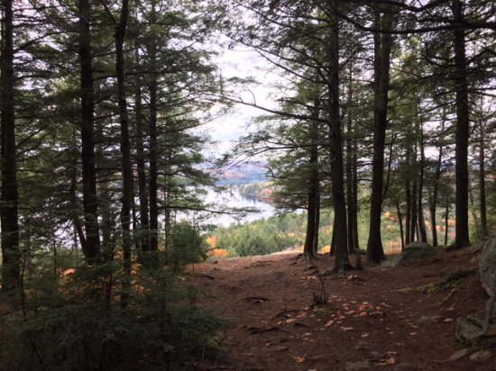 Booth's Rock Trail: Rock Lake from within the trees