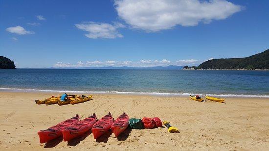 Marahau, New Zealand: Observation Beach