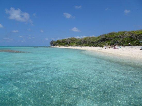 Bundaberg, Australia: Ready for Island Tour